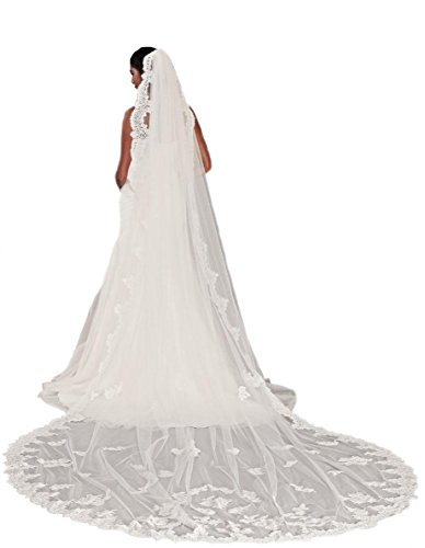 Passat Pale Ivory Single-Tier 3M Floral Embroidered Cathedral Bridal Veil DB37 by Passat
