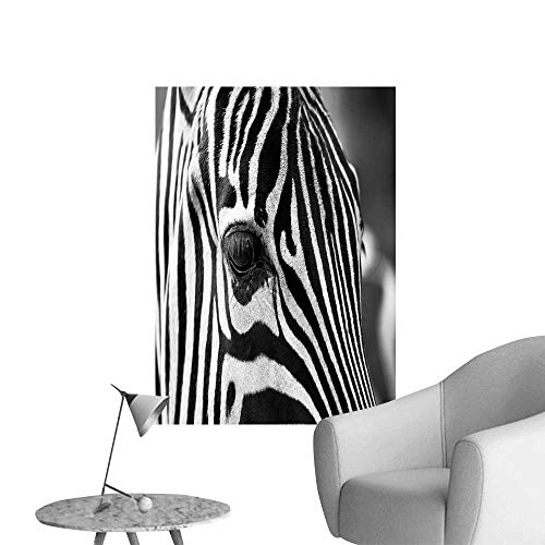 - SeptSonne Wall Stickers for Living Room A Zebra with Black Eyes Vinyl Wall Stickers Print,12
