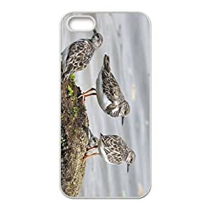 MMZ DIY PHONE CASEBirds Hight Quality Plastic Case for Iphone 5s