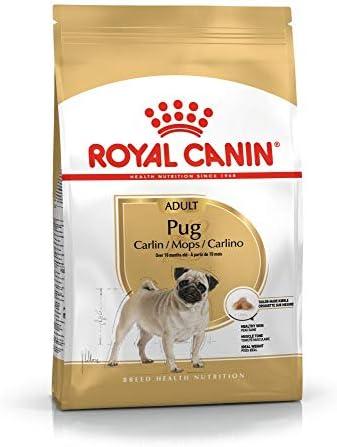 7.5KG Royal Canin Pug Adult Complete Dog Food – Dogs Corner
