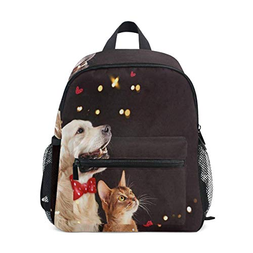 Mini Backpack Cat Dog Abyssinian Kitten Golden Black Night School Bag Small
