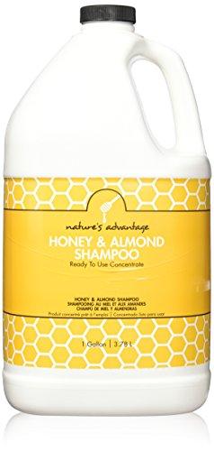 Price comparison product image Nature's Advantage Shampoo, Honey & Almond