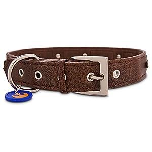 Star Wars Chewbacca Dog Collar, For Necks 10-14, Small, Brown
