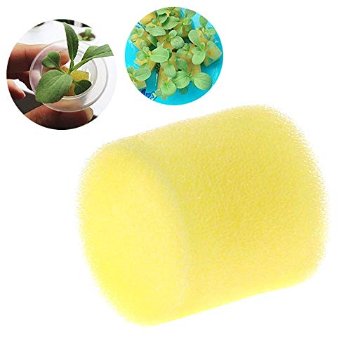 Soilless Media - Eco-Friendly Planting Sponge Round Hydroponic Grow Media Soilless Cultivation Systems Gardening Supply 5PCS