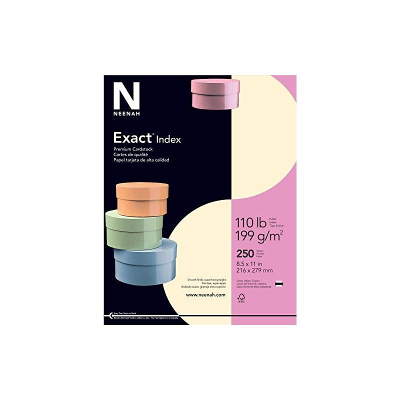 "Exact Index Cardstock, 8.5"" x 11"", 110 l"
