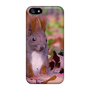 New Style KPlank Hard Case Cover For Iphone 5/5s- Squirrel In Autumn Forest
