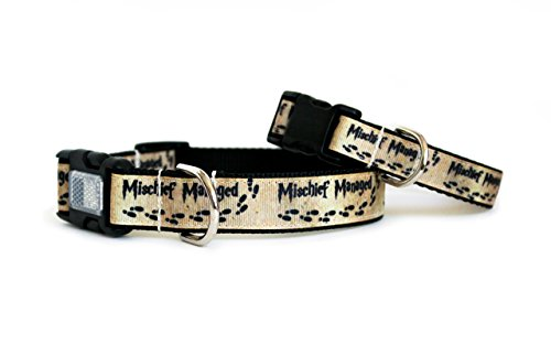 Harry Potter Mischief Managed Dog Collar by You Had Me at Woof