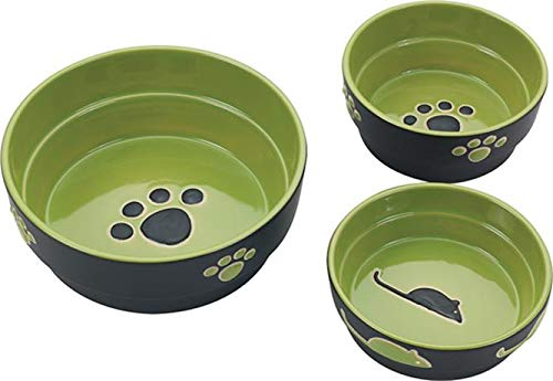 Ethical Pet Products (Spot) DSO6899 Fresco Stoneware Dog Dish, 5-Inch, Green (Dish Ethical Dog)