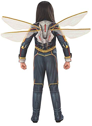 Rubie's Women's DC Comics Wasp Wings, One Size]()