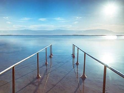 Posterazzi Peir on Dead Sea Israel Poster Print by Assaf Frank (18 x 24) by Posterazzi