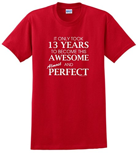 13th Birthday Party Supplies 13th Birthday Gifts For All Awesome Almost Perfect T-Shirt Large Red