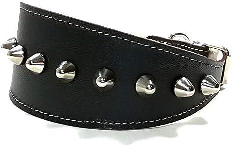 Superpipapo Collar de Cuero Negro para Galgo, Podenco, Whippet y ...