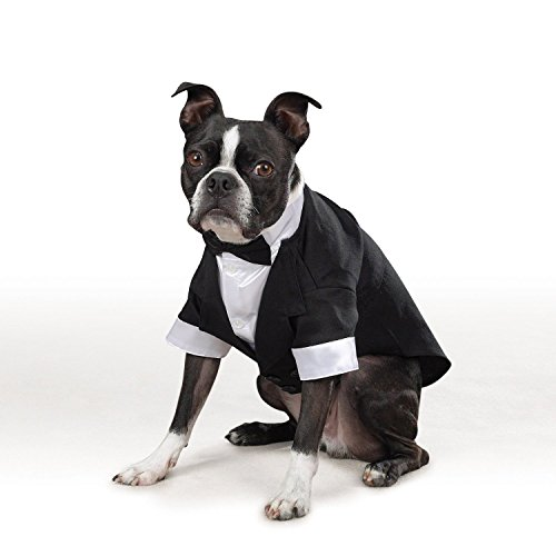 east-side-collection-yappily-ever-after-groom-dog-tuxedo-xl