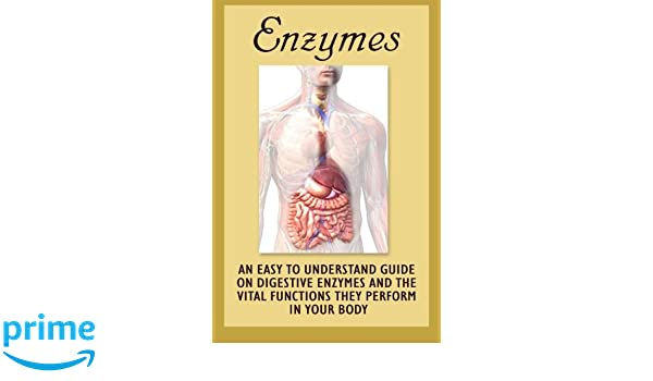 Enzymes: An Easy To Understand Guide On Digestive Enzymes ...