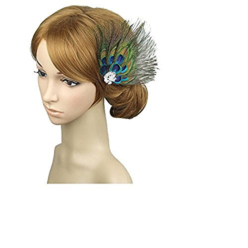 Leiothrix Unique Peacock Feather & Rehinestone Hair Pins for Women and Girls Apply to Party Evening -
