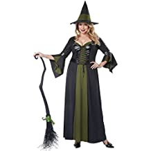 California Costumes Women's Plus-Size Classic Witch Long Dress Plus