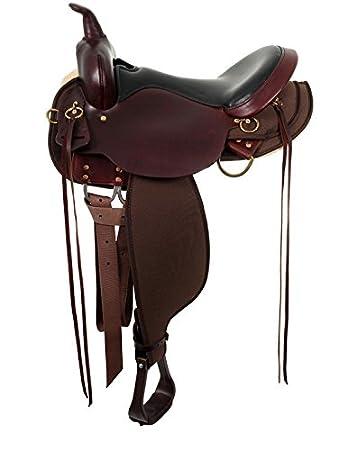 Amazoncom Circle Y High Horse Eldorado Saddle Sports