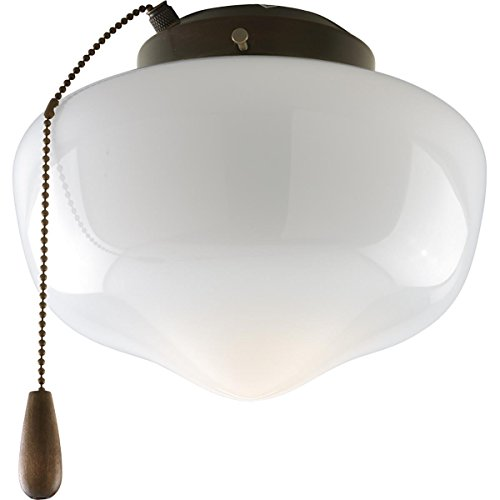 Progress Lighting P2601-20 1-Light Kit with White Glass For Indoor/Outdoor Use, Antique Bronze by Progress Lighting