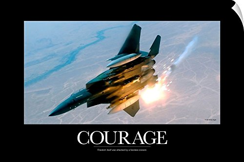- Canvas on Demand Kate Lillyson Wall Peel Wall Art Print entitled Military Poster: An F-15E Strike Eagle pops flares during a combat sortie 60