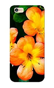 07f96e24018 Tpu Phone Case With Fashionable Look for iphone 4 4s - Spring Orange Flower Case For Christmas Day's Gift