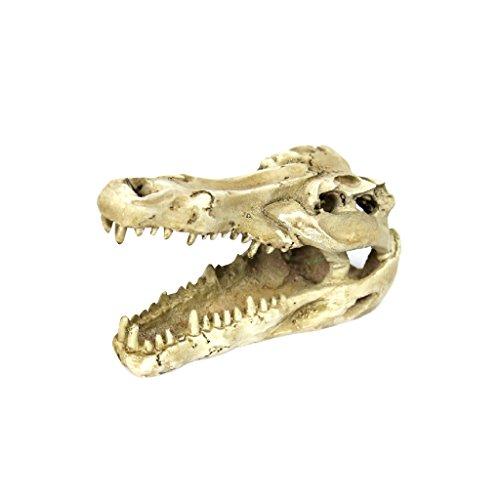 Reptil Vivero Decoración de Terrarios Jardinería Bricolaje Ornamento Cocodrilo