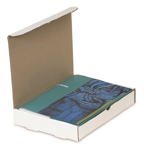 The Packaging Wholesalers 9 x 6-1/2 x 2-3/4 Inches Protective Literature Mailer, 50-Count (BSM962)