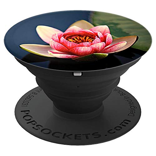 Lotus Water Lily Pond Blossom Flower Pink Garden Yoga - PopSockets Grip and Stand for Phones and - Water Lotus Blossom Lily