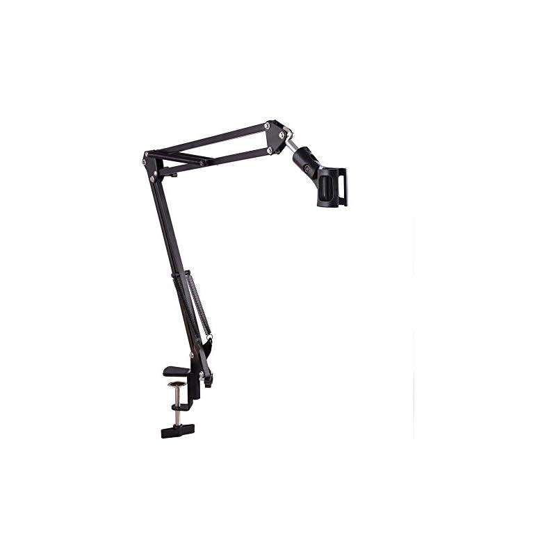 "AW 27.5""(70cm) Microphone Metal Suspensi"