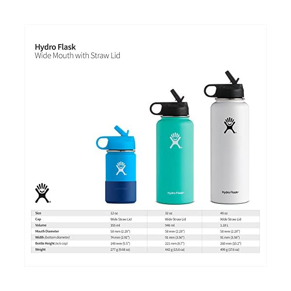 Hydro-Flask-Double-Wall-Vacuum-Insulated-Stainless-Steel-Sports-Water-Bottle-Wide-Mouth-with-BPA-Free-Straw-Lid
