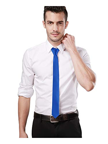 (Landisun Skinny Royal Blue Tie Silk Tie Satin Slim Necktie Exclusive 2 inch)