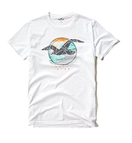 hollister-mens-slim-fit-graphic-t-shirt-medium-white-s