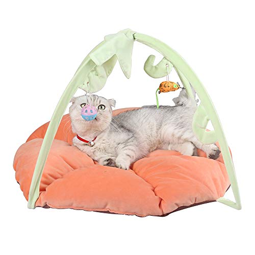 Cat Game Activity Bed – Tent with Hanging Toys More Helps Cats Get Exercise and Stay Active, Best Cat Bed Tent Kitten…
