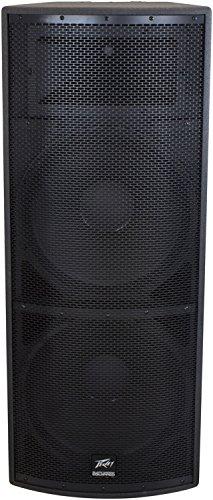 Speaker Black Widow (Peavey SP4 Unpowered Speaker Cabinet)