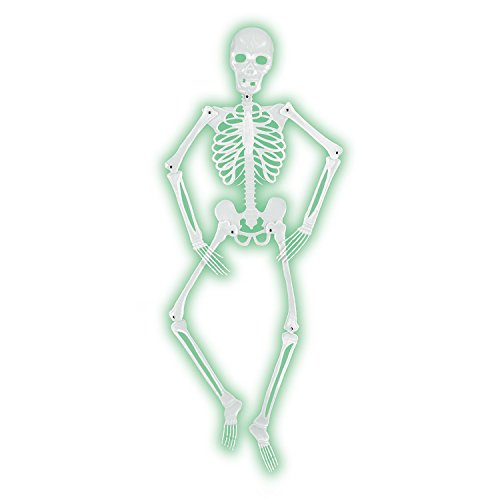 (Mr Bones-A-Glo Skeleton Party Accessory (1 count))
