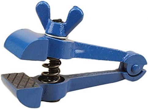 Vaorwne ミニ型多機能ペンチ、小型万力、ジョー、ヘビーデューティー副25mm精密なバイス