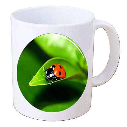 Ladybug Insect on Leaf Handcrafted Coffee Mug Mug,Ladybug Coffee Mug Insect Jewelry Beetle Red and Black Lady Bug Art Mug,BV146