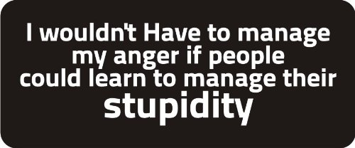 3 - I Wouldnt Have To Manage My Anger If People Could Learn To Manage Their Stupidity 1 1/4 x 3 Hard Hat Biker Helmet Stickers Bs274