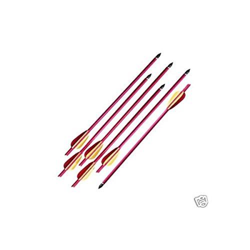 Amazon.com: Arrows & Parts - Archery: Sports & Outdoors: Arrows ...