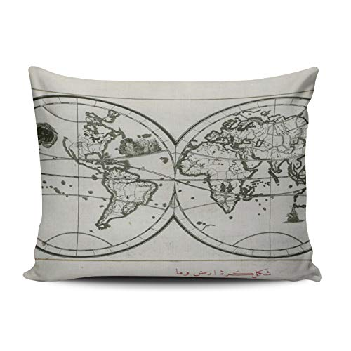 (WEINIYA Home Custom Decor Oil Painting World Map in Double Hemisphere Throw Pillow Cover Exquisite One Side Printed Patterning Standard 20x26 Inches)