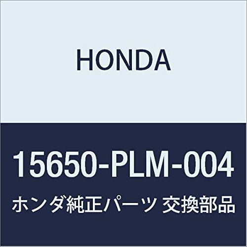 -PLM-004) Oil Dipstick ()