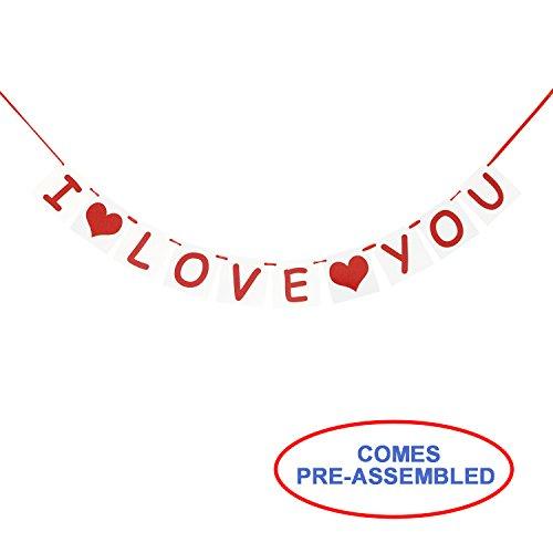 I LOVE YOU Banner | Valentines Day Decorations | Valentines Party Favors | Valentines Banner Garland | Valentine Photo Prop Backdrop | Engagement Decorations | Wedding Decoration | Anniversaries Decor