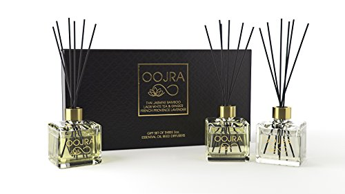 Oojra 3 (2oz) Essential Oil Reed Diffusers Aromatherapy Gift Set; Thai Jasmine Bamboo, Laos White Tea & Ginger, French Provence Lavender; decor bottle, premium black reeds, 6oz total (lasts 5+ months) - Minty Ginger Blend Alcohol