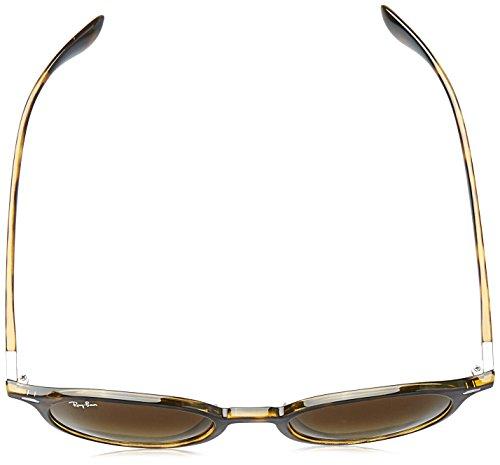 4237 RB Havana Ray Ban Sonnenbrille xSqWt4
