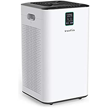 Amazon Com Aeramax 300 Large Room Air Purifier Mold