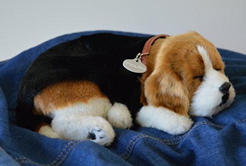 Breathable Beagle Puppy Companion Pet for People with Memory Loss from Aging and Caregivers