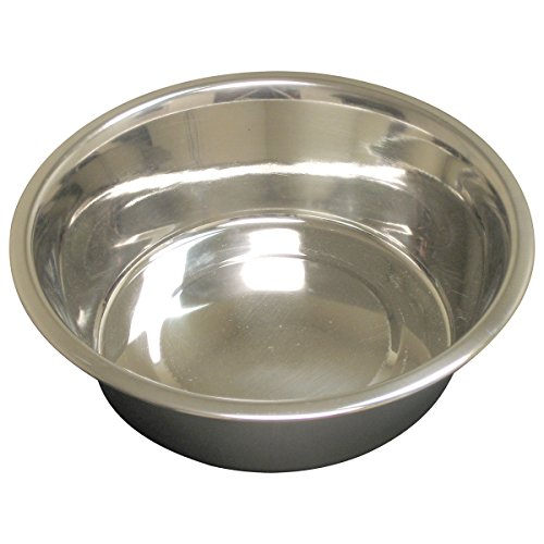 QT Dog Standard Stainless Steel Food Bowl, 1/2 Pint ()