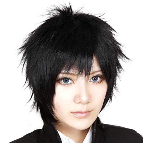 HOOLAZA Black Short Slight Fluffy Curly Hair Tail Cosplay Wig Sword Art Online Kirito Gintama Hijikata Toushirou Hitman Reborn Hibari Kyoya Okumura Rin Gray Fullbuster Cosplay Wig