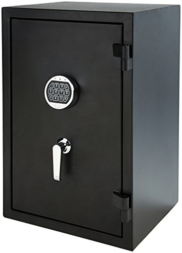 - AmazonBasics Fire Resistant Box Safe, 2.1 Cubic Feet
