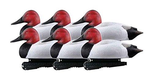- Greenhead Gear Over-Size Duck Decoy,Canvasbacks,1/2 Dozen