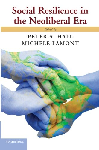 Social Resilience in the Neoliberal Era ebook